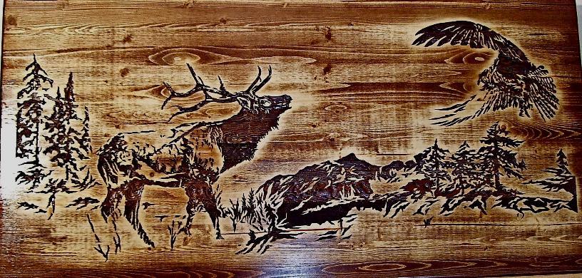 Western Wood Burning Ideas